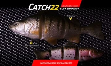Immagine di Castaic Catch 22 Swimbait
