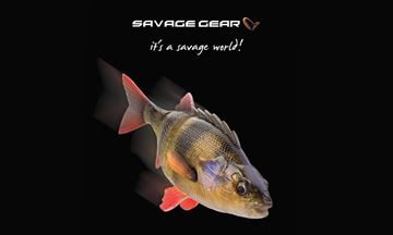 Immagine di Savage Gear 4D Line Thru Perch